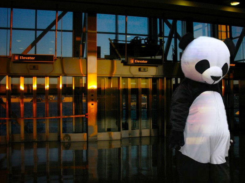 man in a panda costume outside of an airport terminal